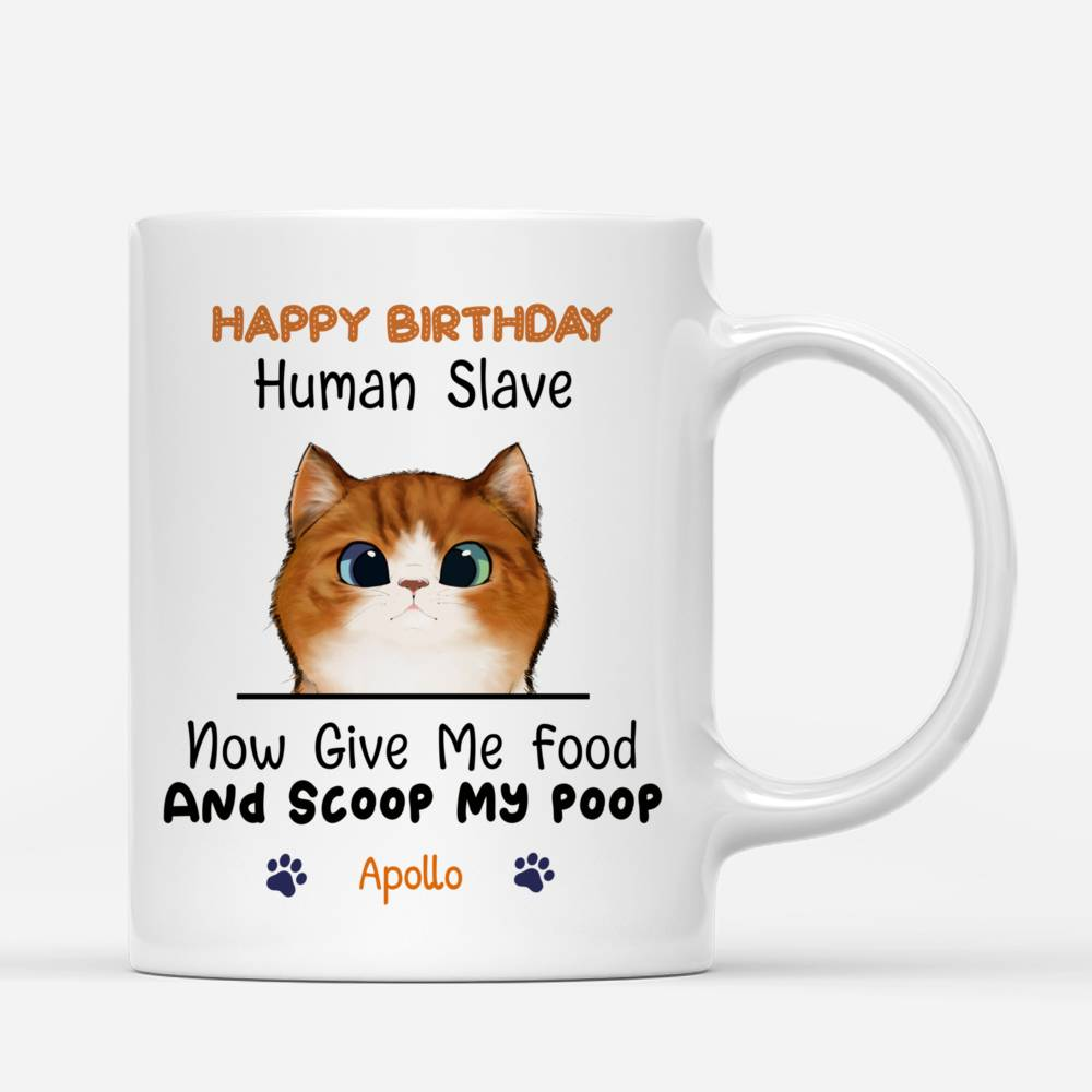 Personalized Mug - Cat Celebration - Happy Birthday - Now give me food and scoop my poo_2