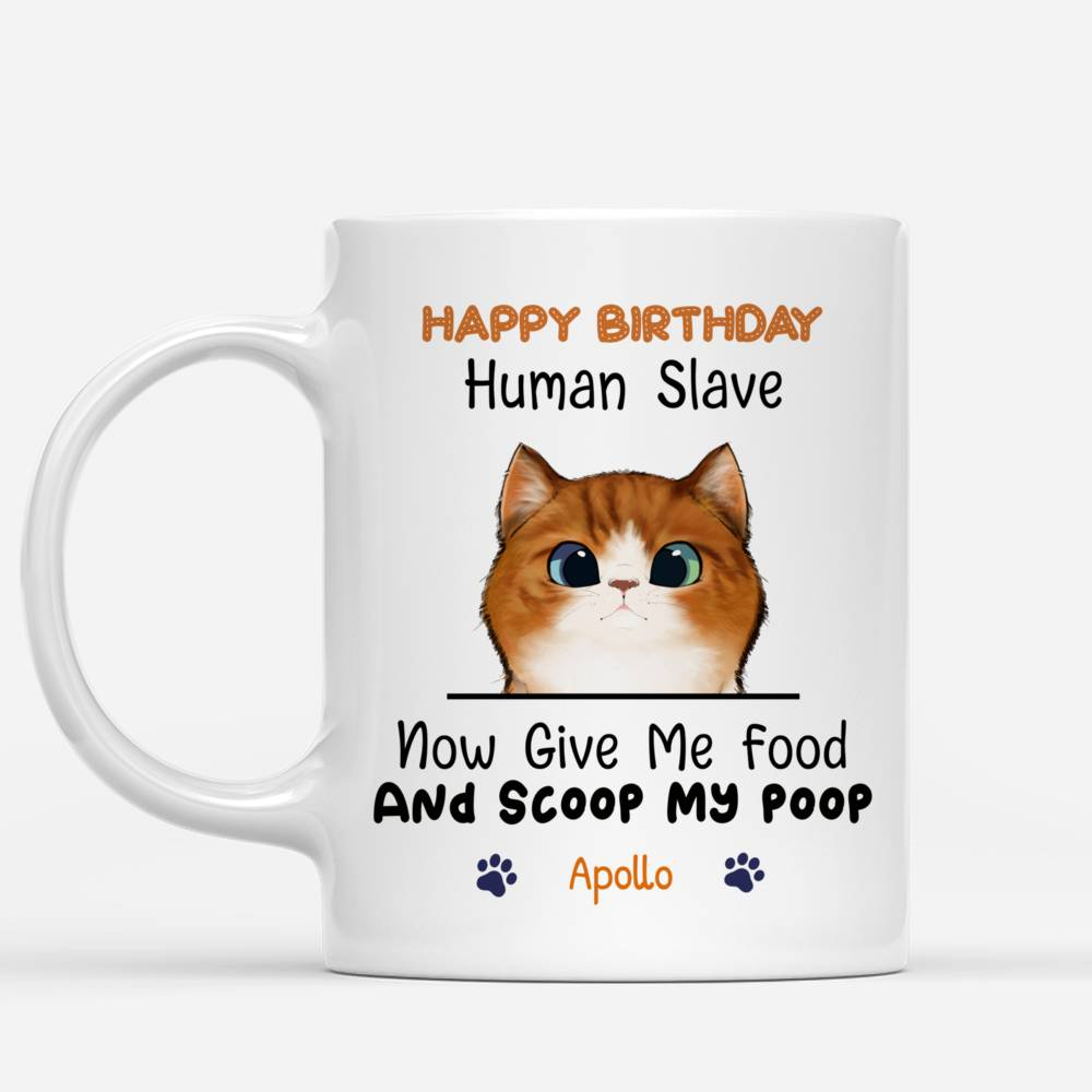 Personalized Mug - Cat Celebration - Happy Birthday - Now give me food and scoop my poo_1